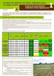 Produire du colza - Chambre d'agriculture de l'Indre