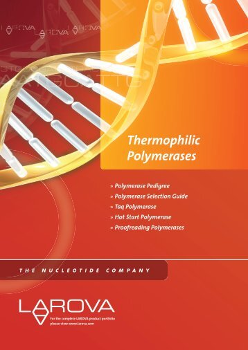 Thermophilic Polymerases