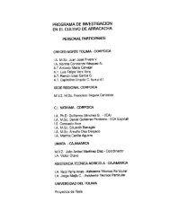 programa de investigación en el cultivo de arracacha - Corpoica