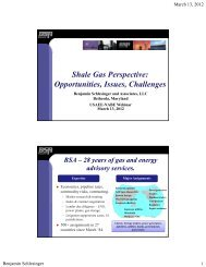 Shale Gas Perspective: Opportunities, Issues, Challenges