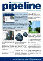 Issue 30 - IPS Flow Systems
