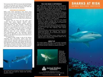 SHARKS AT RISK - Animal Welfare Institute