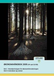 ØKONOMIHÅNDBOK 2009 (FR-sak 53/09) - Oppland fylkeskommune
