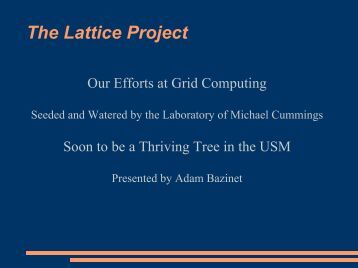 our efforts at grid computing - The Lattice Project