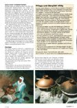 Tajine mit Pfifferlingen und Lachs in Senf-Zitronen ... - Ali Baba Tajine - Seite 2
