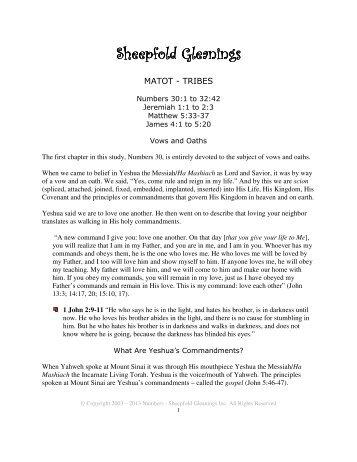 Sheepfold Gleanings Sheepfold Gleanings - Unleavened Bread