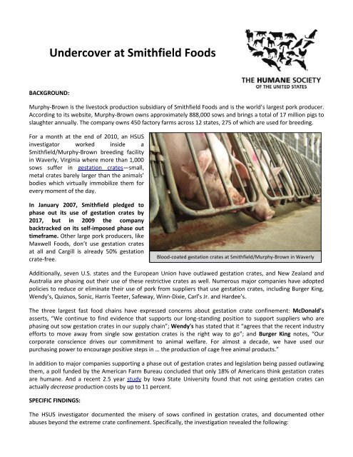 Undercover at Smithfield Foods - The Humane Society of the