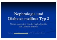 Nephrologie und Diabetes mellitus Typ 2