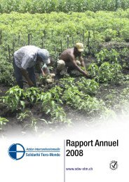 Rapport Annuel 2008 - Solidarität Dritte Welt