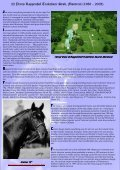 the moose antlers - Trakehners Australia Inc. - Page 4