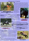 the moose antlers - Trakehners Australia Inc. - Page 5