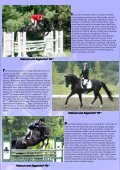 the moose antlers - Trakehners Australia Inc. - Page 6