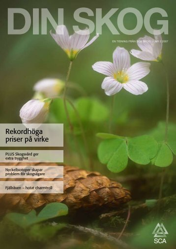 Rekordhöga priser på virke - SCA Forest Products AB