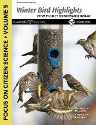 Winter Bird Highlights 2009 - Cornell Lab of Ornithology