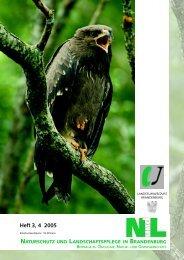 Europäische Vogelschutzgebiete - MUGV - Brandenburg.de