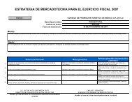 PROGRAMA Y ESTRATEGIA - CPTM