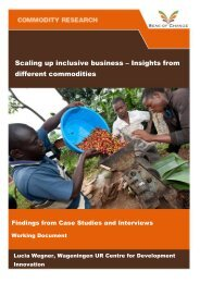 Scaling up inclusive business – Insights from different commodities