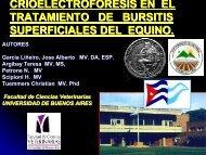 Crioelectroforesis en Bursitis - Facultad de Ciencias Veterinarias