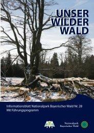 die Natur - Nationalpark Bayerischer Wald