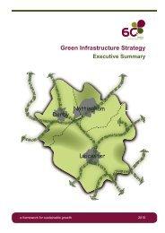 6Cs GI Strategy Executive Summary (pdf 3.5Mb) - River Nene ...