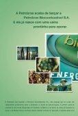investimentos - Canal : O jornal da bioenergia - Page 2