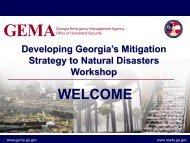 Developing Georgia's Mitigation Strategy to Natural Disasters ...