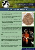 ADOTTA UNA BAT-BOX - Year of the Bat - Page 4
