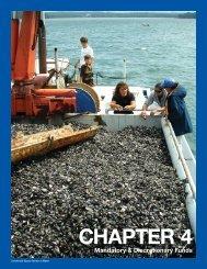 Chapter 4: Other Accounts - NOAA