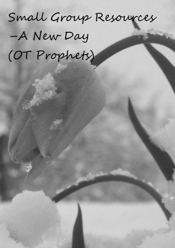Small Group Resources –A New Day (OT Prophets) - Oxford ...