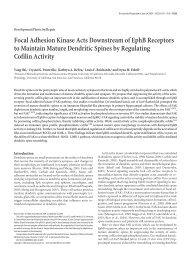 Focal Adhesion Kinase Acts Downstream of EphB Receptors to ...