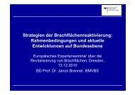 Strategien der Brachflächenreaktivierung ... - B-Team Initiative
