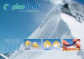 Download catalogue in italian - picodent