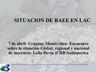 Presentación de situación de RAEE en ALC - Centro Coordinador ...