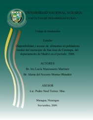 Marco Teórico - Centro Nacional de Información y Documentación ...