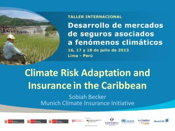 Climate Risk Adaptation and Insurance in the Caribbean