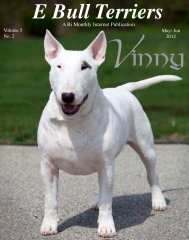 Download May/ Jun 2012 Edition in - E Bullterriers