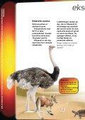 Xtrem Ekspedition - kun den smarteste overlever - Experimentarium - Page 4
