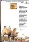 Xtrem Ekspedition - kun den smarteste overlever - Experimentarium - Page 6