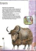 Xtrem Ekspedition - kun den smarteste overlever - Experimentarium - Page 7