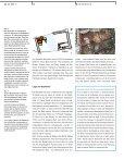 Die Krutbadstube – vom Baden im alten Solothurn _Andrea Nold ... - Page 3