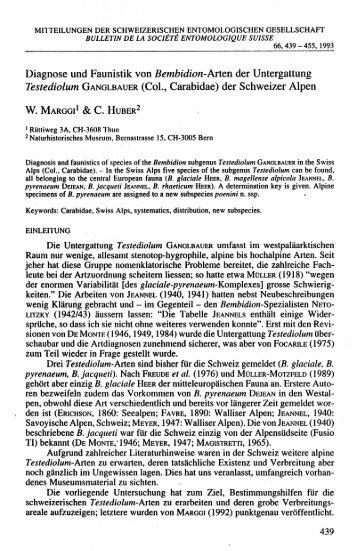 Diagnose und Faunistik von Bembidion-Arten der Untergattung ...