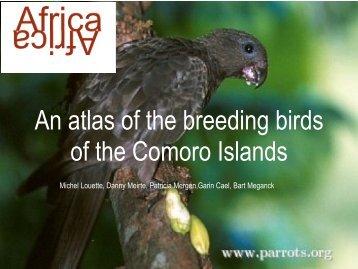 An atlas of the breeding birds of the Comoro Islands - Download