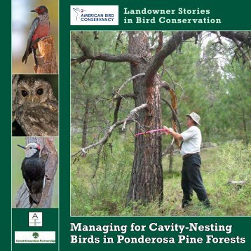 Managing for Cavity-Nesting Birds in Ponderosa Pine Forests