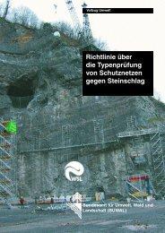 Richtlinie über die Typenprüfung von Schutznetzen ... - BAFU - CH