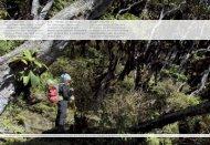 Zwischen den malerischen Rhododendron-Wäldern ... - Exped