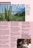 Southwest Adventures - Adventure Tours by Travel Dream West - Page 2
