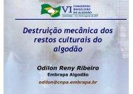 Odilon Reny - Embrapa Algodão