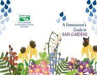 A Homeowner's Guide to RAIN GARDENS - City of Springfield