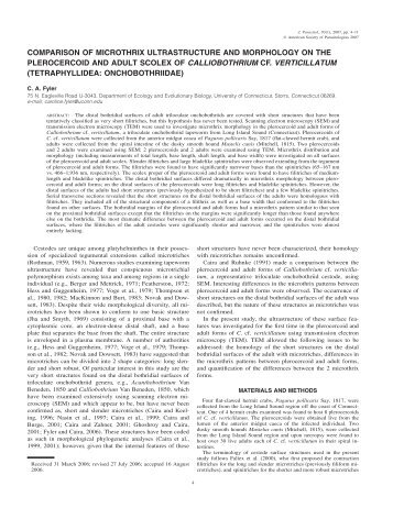 effects of ageing on biological psychosocial In all our teaching, we invite students to conceptualize patient problems by using a bio-psycho-social-spiritual formulation this model is used biological past genetics: consider whether any blood relatives that have had psychiatric problems, substance use problems or suicide attempts/suicides is there a history of.