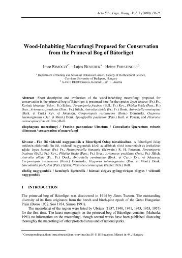 biodiversity of soil-inhabiting fungi pdf